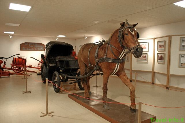 Arklio muziejus